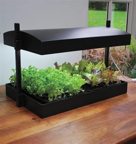 growlight garden   perfect kit  indoor salad