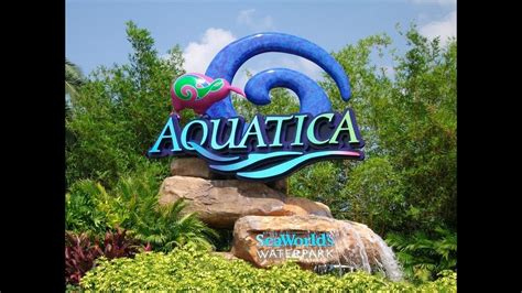 aquatica seaworld florida usa aquatica orlando florida seaworld waterpark doovi