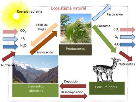 cadenas productivas sustentables regionales funciones o servicios del agua