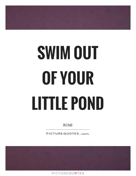 pond quotes swim quotes swim sayings swim picture quotes
