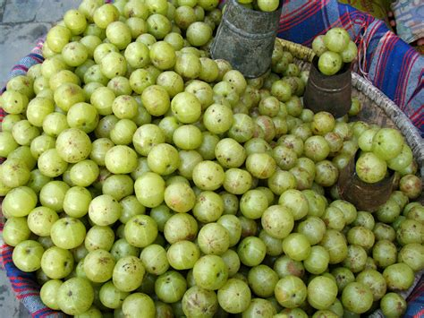 fruit w most fiber indian fruits name list pictures to pin on