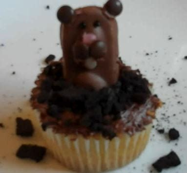 groundhog day birmingham zoo groundhog s day cupcakes eat drink better