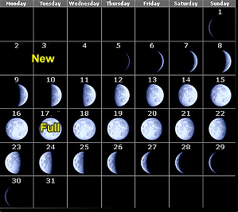 lunar hair growth 2014 hair growth and moon phases 2015 lunar calendar for