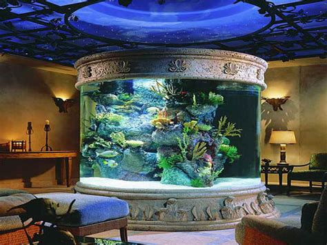 home accessories fish tank decor ideas with dome design