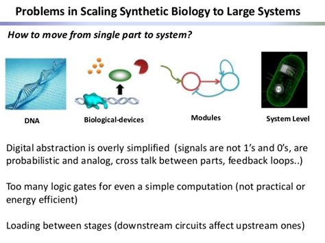 synthetic circuits integrating logic and memory in living cells prof ramez daniel technion