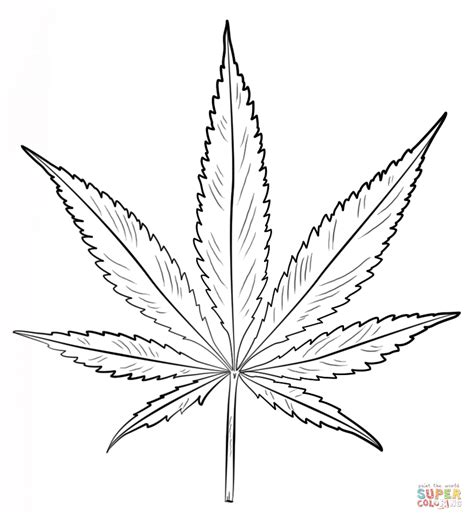 coloring page pot leaf pot leaf coloring page free printable coloring pages