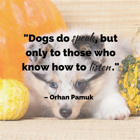 quotes about puppies quotes the ultimate list
