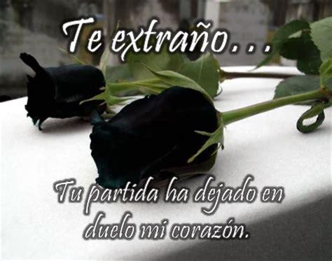 rosas negras con frases tristes para dedicar imgenes que compartir rosas negras para expresar duelo flores hermosas