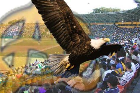 imagenes de leones vs aguilas las 193 guilas se medir 225 n 3 domingos contra licey y 1 contra