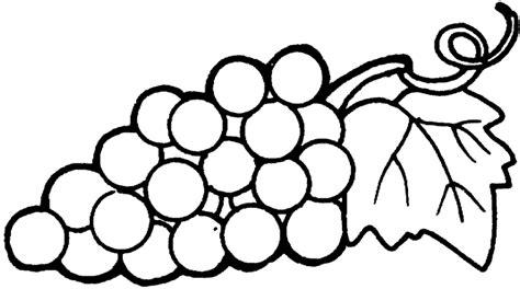 imagenes de uvas a color para imprimir dibujos para pintar frutas uvas dibujos para cortar y