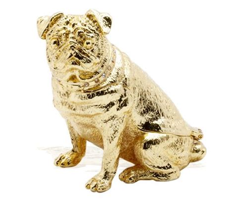 golden pug golden pug pin your pugs board
