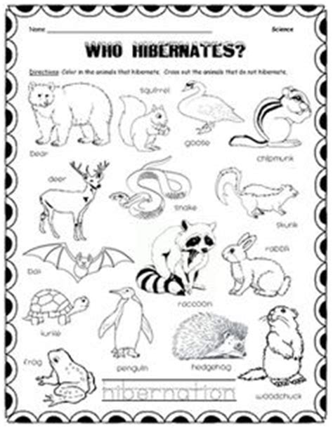 Hibernation Worksheets by Free Hibernation Unit Study Studying Study Tips And Tips