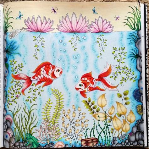 secret garden colouring book vancouver 26 best images about fish secret garden peixe jardim