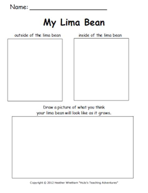 printable observation journal classroom freebies lima bean experiment printable help