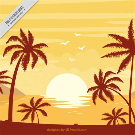 Sunset Vectors Photos And Psd Files Free Download | sunset beach vectors photos and psd files free download