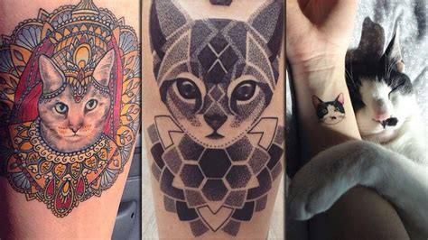 katzen tattoo gallery 28 katzen tattoos die ihr einfach lieben werdet news mtv