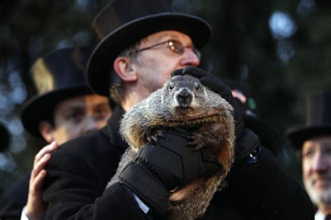groundhog day 2016 groundhog day is the dumbest american for the win