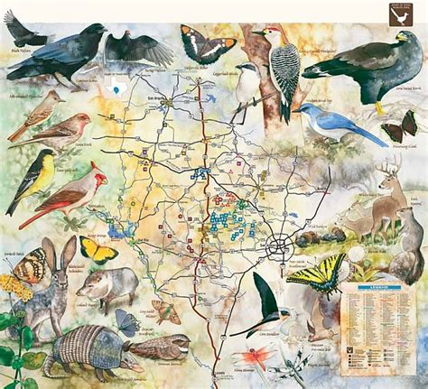 maps of west texas of texas west wildlife trails map