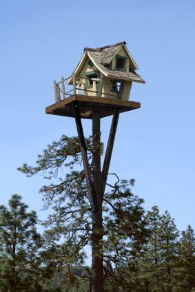 Tiny Tree House Way Up High Tiny Tree House