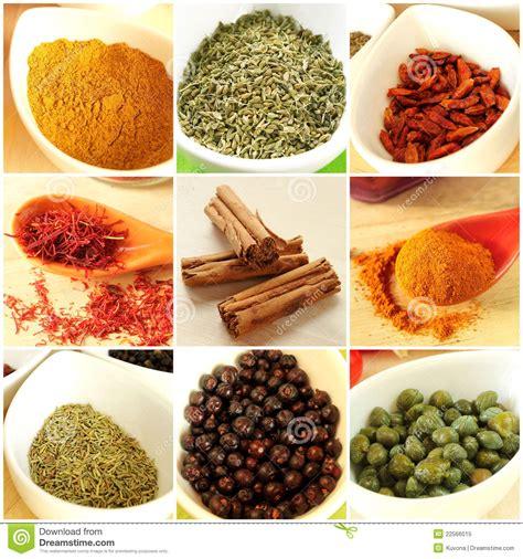 ingredient cuisine food ingredients collage stock image image of caper
