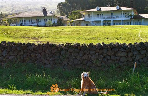 Oprahs Hawaiian Home In Earthquake by Some Words On Wordless Wednesday Oprah S Estate Sugar
