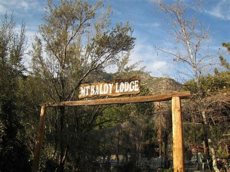 Mount Baldy Cabins by Mount Baldy Pictures Traveller Photos Of Mount Baldy Ca