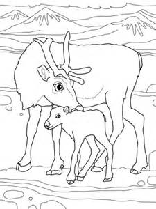 baby reindeer with mother coloring page supercoloring com