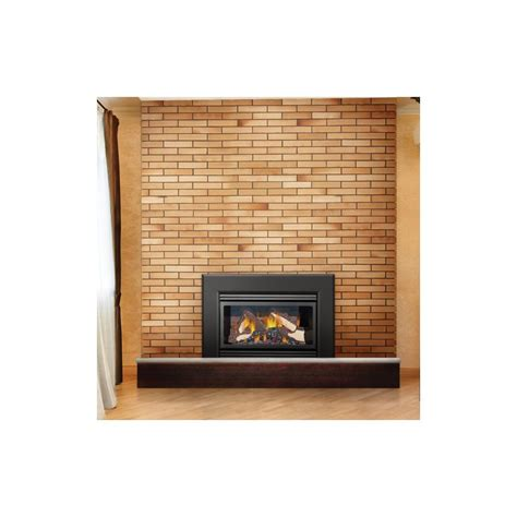 Do Gas Fireplaces Need To Be Vented by Napoleon Lhd45nsb Na Gas Napoleon Lhd45sb 24000