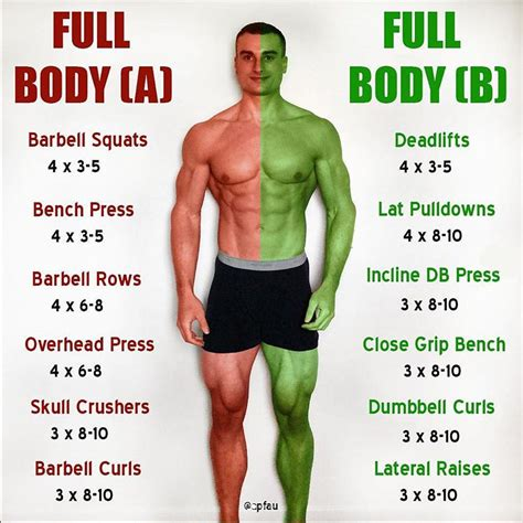 compound isolation exercise cheat sheet guide