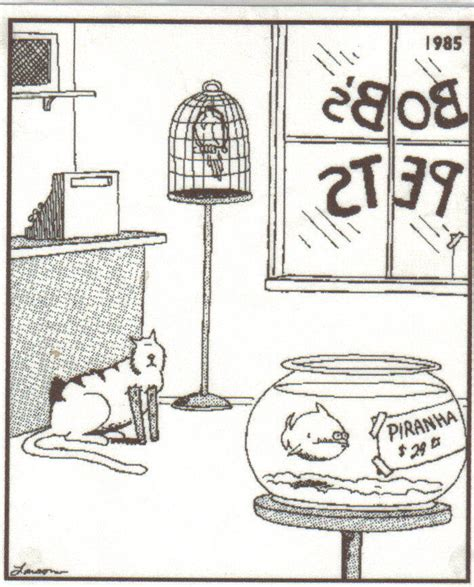 today s far side fix 24hourcfire