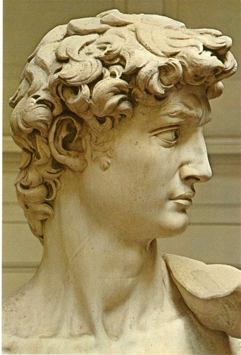 michelangelo david statue michelangelo s quot david quot the human face pinterest