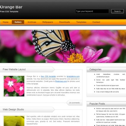 Orange Bar Free Website Templates In Css Html Js Format For Free Download 607 38kb Free Bar Website Template