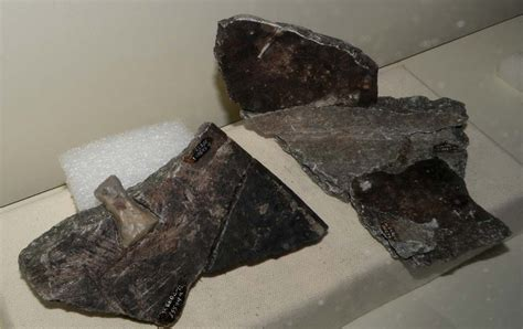 Where Is Soapstone Found Elfshot Soapstone Repaired With Chert Bow Ties