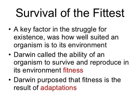 Survival Of The Fittest Essay by How Do I Start An Essay About Survival Of The Fittest Dradgeeport133 Web Fc2