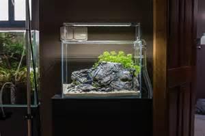 aquascape small tank nano clear reduced design