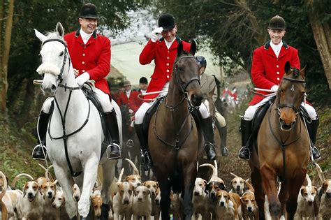 the hunts conservative plan to repeal the fox hunting ban is a waste