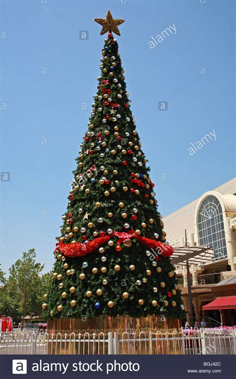 christmas tree perth city centre western australia stock