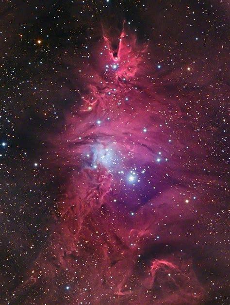 christmas tree nebula page 3 pics about space