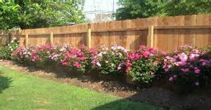 Florida Landscaping Ideas For Backyard Rose Garden Landscaping Ideas Gardening Pinterest