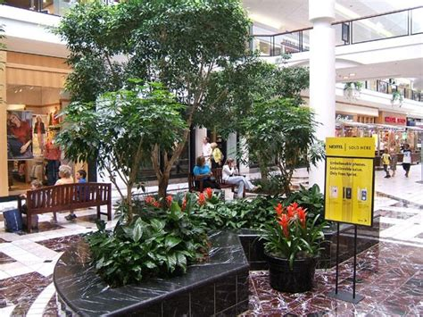 Interior Plantscaping by Interior Plantscaping Plantscaping Interior Commercial