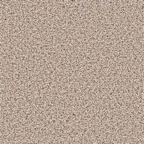 home decorators carpet home decorators collection carpet sle trendy threads i color park city texture 8 in x 8