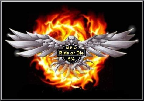 title 18 usc section 242 ride or die brotherhood independent mro nation