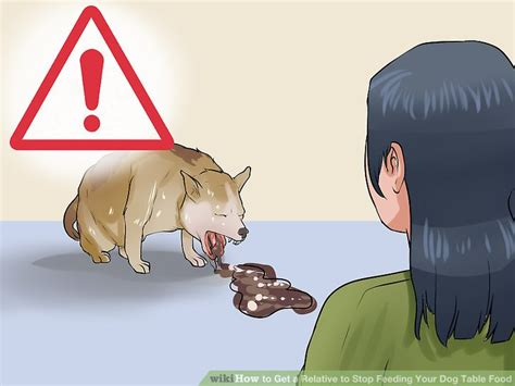 when to stop feeding puppy food how to get a relative to stop feeding your table food