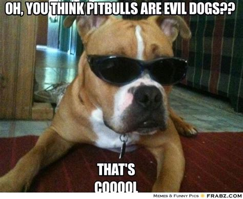 Oh You Dog Meme Generator - hmmmm pitbull dontjudge ilovedogs certapet