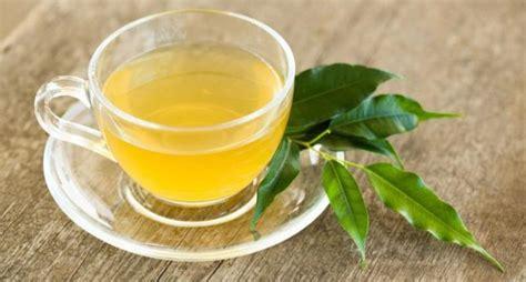 diet teh hijau  lemon  tercepat menurunkan berat