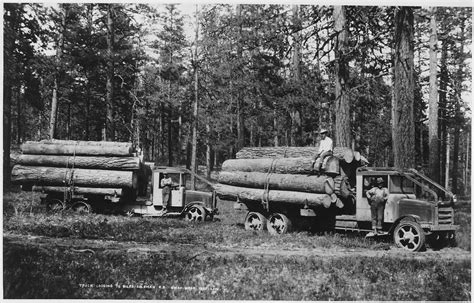 bureau europ馥n de pr騅oyance file ladd photo of solid tired moreland logging trucks of
