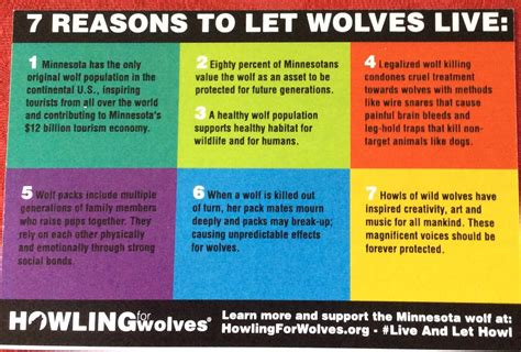 7 Reasons To Learn To Cook by Howling For Wolves Live And Let Howl Rally Wolves Of