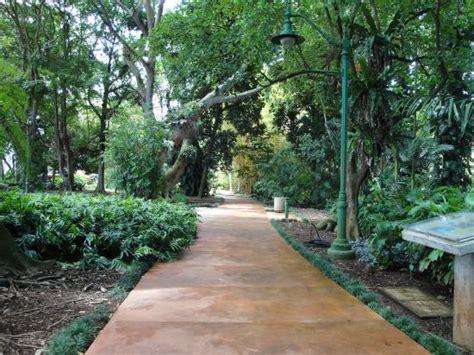 Wahiawa Botanical Gardens The Park Has A Lot Of Walk Ways Picture Of Wahiawa Botanical Garden Wahiawa Tripadvisor