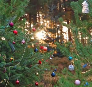 memory christmas tree detail 2 169 steve fareham