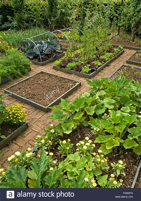 Cottage Vegetable Garden With Small Raised Beds And Brick Small Raised Vegetable Garden